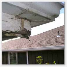damaged fascia cause by a leaking gutter, we recommend cleaning them twice a year