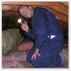 attic inspections