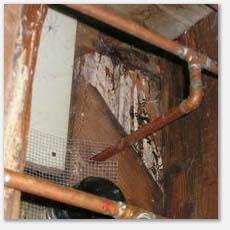 rotten sub floor in crawl space